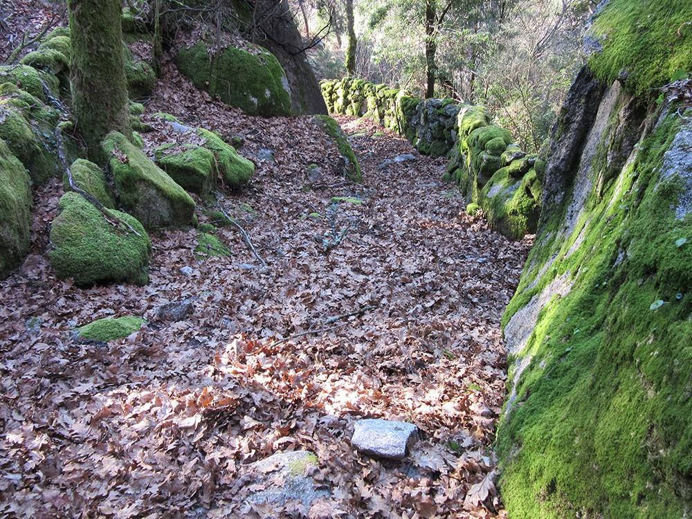 PR8 – Camino de la Mezcla...